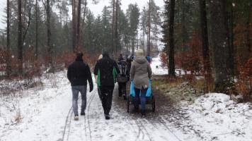 Schneetreiben im Faberwald
